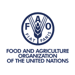 FOOD AND AGRICULTURE ORGANIZATION OF THE UNITED NATIONS (FAO)- INVITATION TO BID FOR AQUACULTURE ACCESSORIES (CATFISH FEEDS AND FINGERLINGS) TO BE DELIVERED TO FAO LOCATIONS IN MAIDUGURI, BAMA, DAMATURU AND YOLA IN NORTH-EAST, NIGERIA